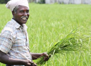 किसानों के खातों में 2000 रुपये