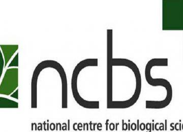 एनसीबीएस वैज्ञानिक