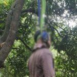 पेड़ से लटकता मिला युवक का शव