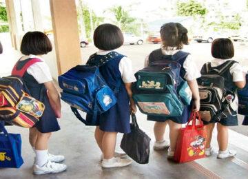 School Closed till 20 May