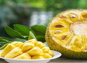 jackfruit for immunity