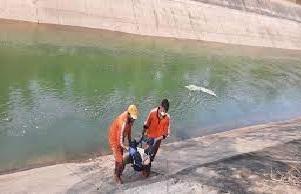 बांध के पानी में गिर जाने से दो युवकों की हुई मौत